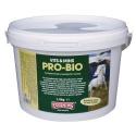 Suplemento digestión con probióticos Equimins Pro Bio Supplement